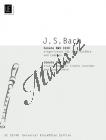 Bach Johann Sebastian | Sonate, c-Moll  BWV 1030 | Noty na zobcovou flétnu