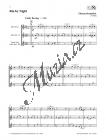 Bramböck Florian | Saxophontrios World Music | Noty na saxofon