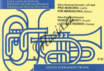 Bártek Mojmír | Gejzír - kvapík pro velký dechový orchestr | Partitura a party - Noty pro dechovou hudbu - DH83.jpg